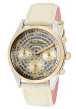 paris hilton watches - beverly silver